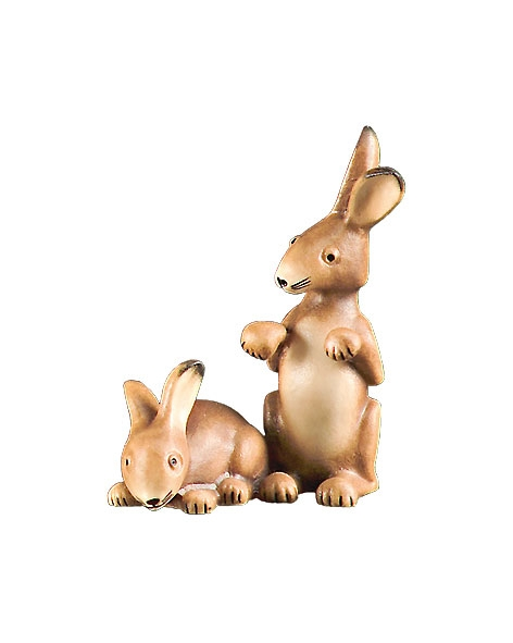 Group of hares